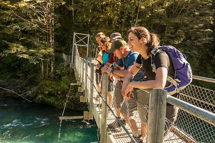 New Zealand Walking Tours Travel Blog #traveltips #travelnewzealand #purenewzealand #destinationnz
