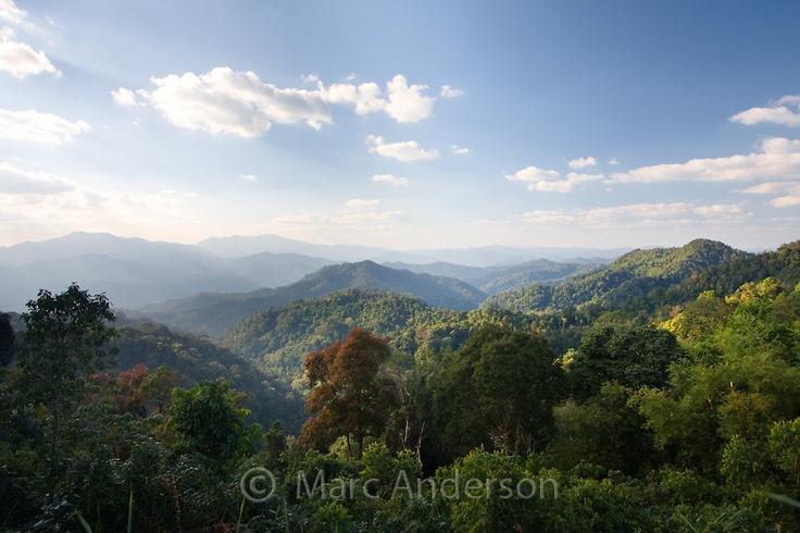 Kaeng Krachan National Park, Thailand | ... tropical rainforest and hills in Kaeng Krachan National Park, Thailand