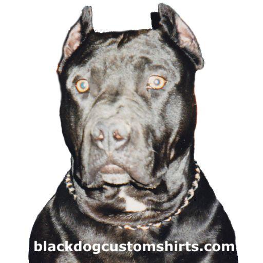 23 best donald trump 2016 gear images on pinterest for Custom t shirts no minimum order