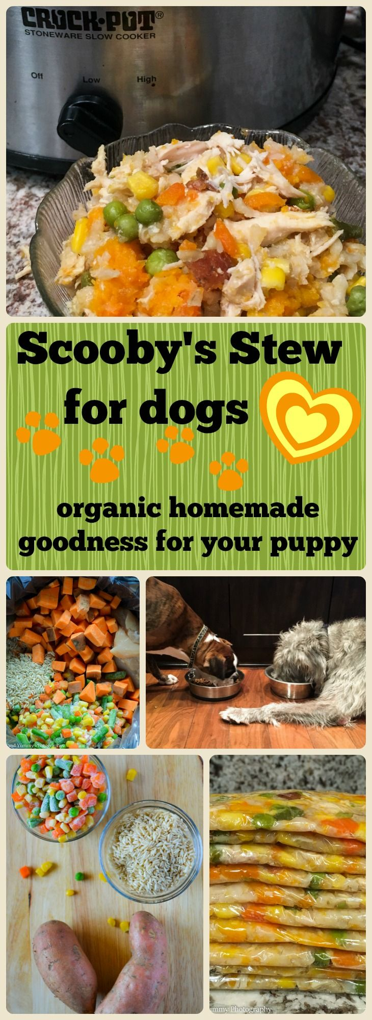 Making your own dog food is easy for you and good for your pooch too! Freeze it in individual serving size portions for quick thawing during the week.