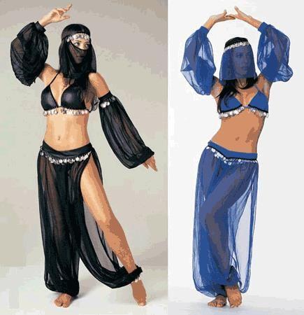 Сшить костюм для восточных танцев самоучитель