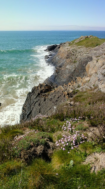à Trefeuntec, sur la pointe; baie de Douarnenez, Finistère, Bretagne