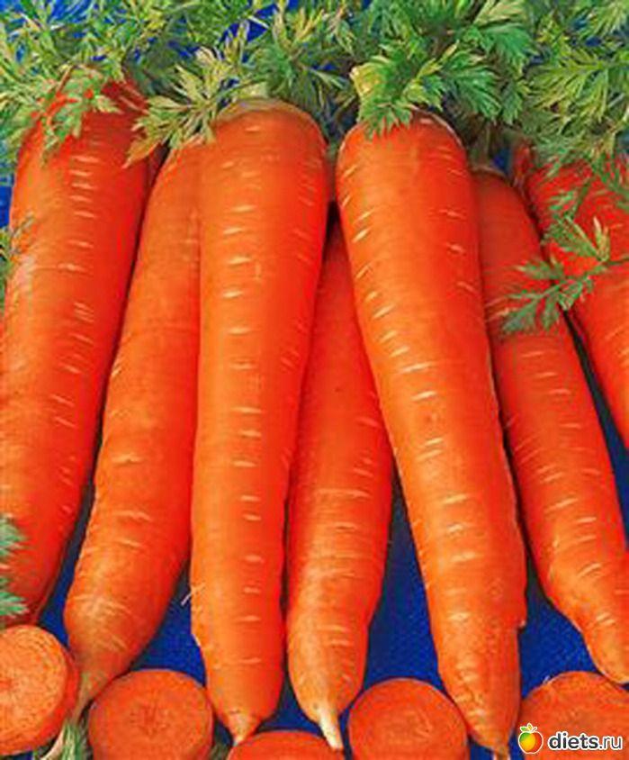 Сею морковь по собственной технологии. Обсуждение на LiveInternet - Российский Сервис Онлайн-Дневников