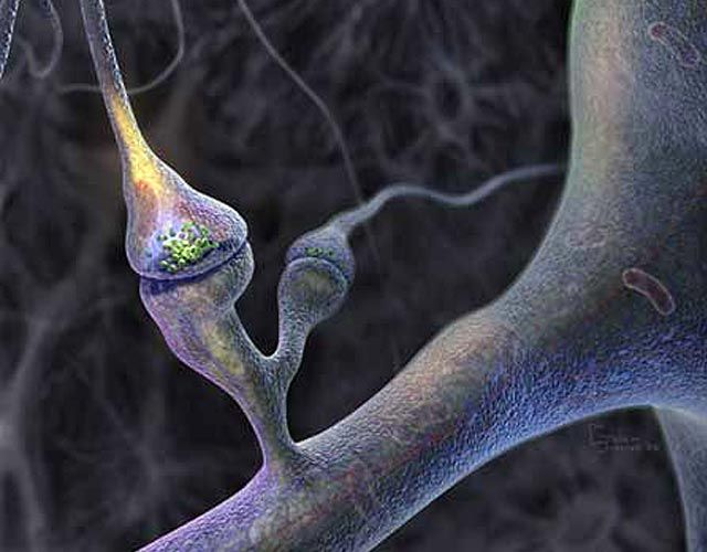 A clinical trial of an Alzheimer's disease treatment developed at MIT has found that the nutrient cocktail can improve #memory in #patients with early #Alzheimer's.