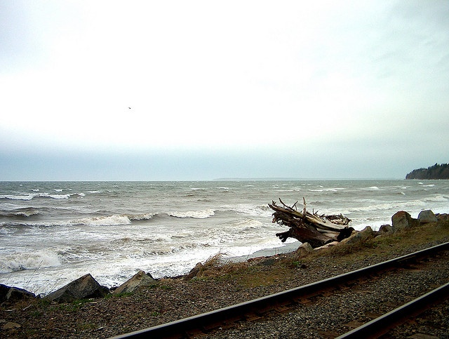 Wind Storm, White Rock, BC by RobertCiavarro, via Flickr