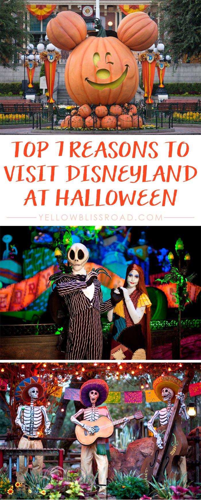 Top 7 Reasons to Visit Disneyland at Halloween