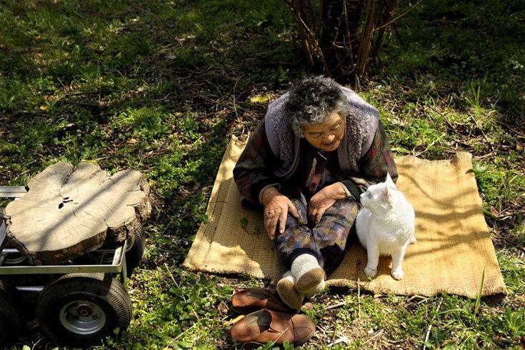Miyoko Ihara has been taking photographs of her grandmother, Misao and her beloved cat Fukumaru since their relationship began in 2003. Their closeness has been captured through a series of lovely photographs. 11-27-12 / Miyoko Ihara