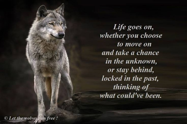 Life Goes On Whether You Choose To Move On And Take A