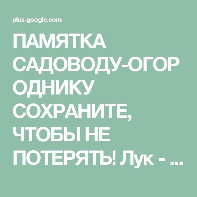 ПАМЯТКА САДОВОДУ-ОГОРОДНИКУ СОХРАНИТЕ, ЧТОБЫ НЕ ПОТЕРЯТЬ! Лук - Перед посадк...