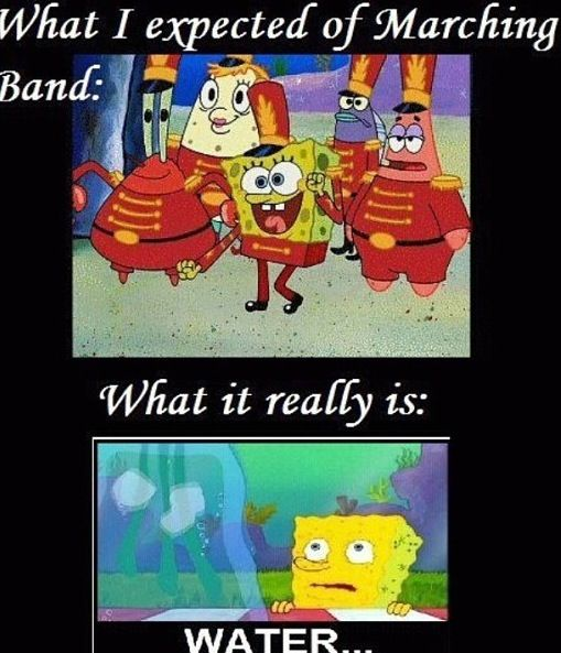 15 Best Images About Band Humour On Pinterest