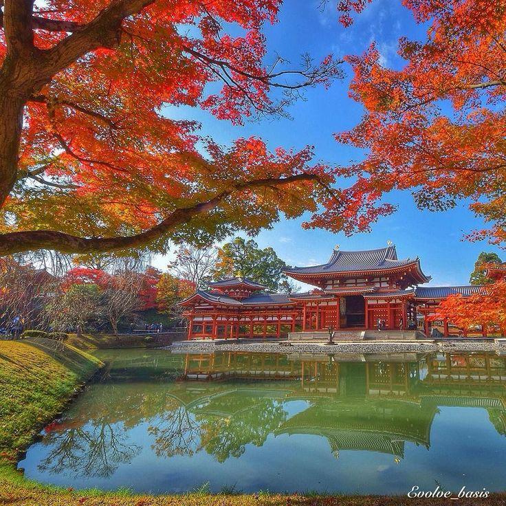 お疲れ様です . 12月なりましたが平等院の紅葉は真っ赤っ赤ですよぉ . 去年のですけど . . #far_eastphotography #d5300 #ららら_無人くん_ . . Location: #平等院鳳凰堂  . 京都 Kyoto/Pref:Japan . . by evolve_basis