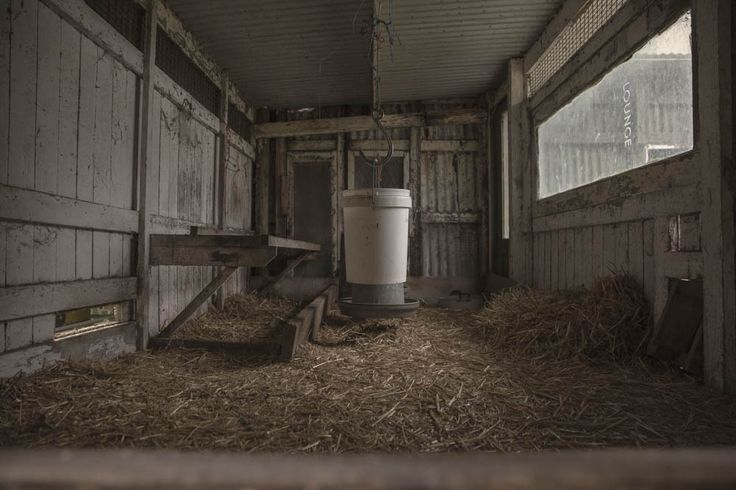 This is another view of the chicken shed (after editing). I like this view a lot as its almost like you are getting the eggs from the box.