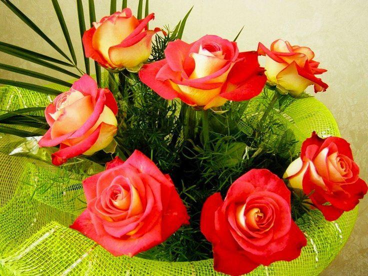 Открытки музыкальные другу цветы