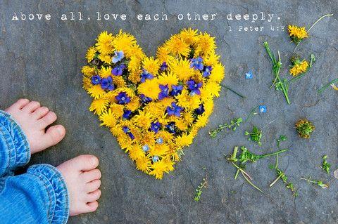<3Beautiful Flower, Photos Ideas, Heart Heart, Christian Art, Art Prints, 1 Peter, Favorite Art, Peter 4 8, Beautiful Heart