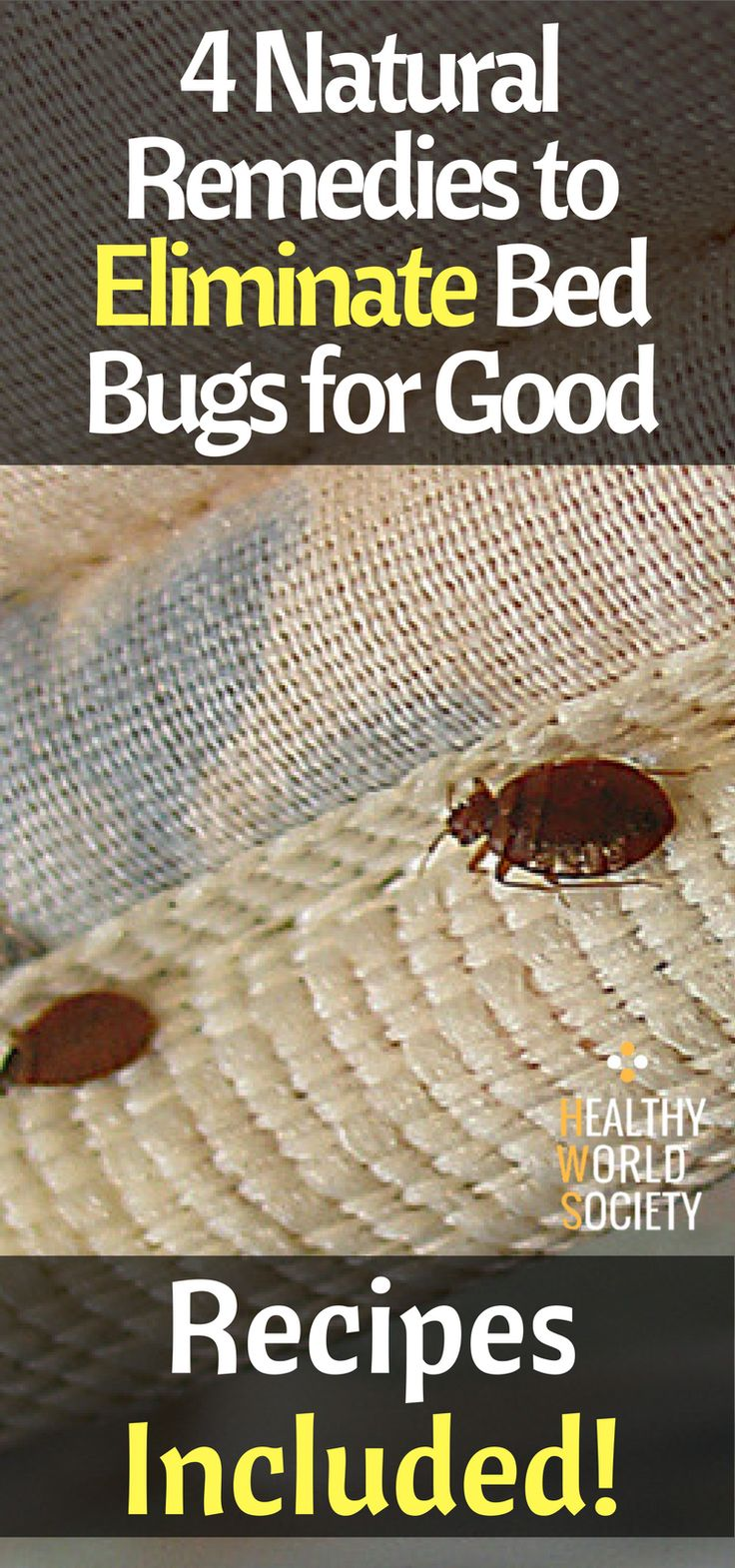 4 Natural Remedies to Eliminate Bed Bugs for Good