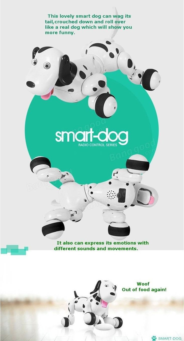 JG 2.4G RC Robot Smart Dog RC Intelligent Simulation Mini Dog