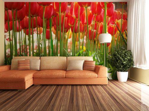 Rote Tapete Schlafzimmer : ?ber 1.000 Ideen zu ?Rote Tulpen auf Pinterest Tulpe, Rosa Tulpen
