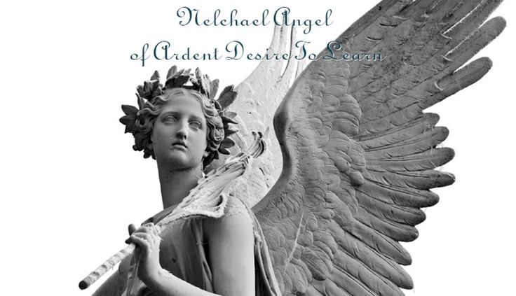 Nelchael Angel of Ardent Desire To Learn help you to travel between abstract, reality and ideas, he fills you with gift for science, technology and poetry. #spirituality #spiritual #angels #archangels #heaven #guardianangel