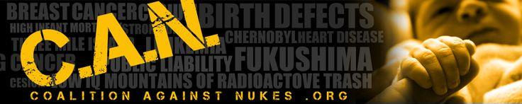 An Update from C.A.N. Member Hiroyuki Hamada   Coalition Against Nukes