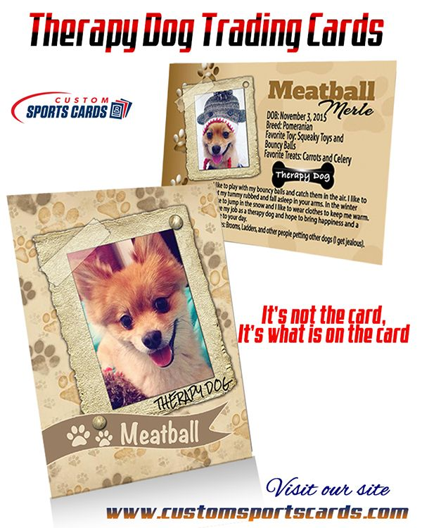 Therapydogtradingcards Therapydogs Customsportscards Therapy