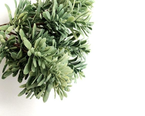 17 Best Ideas About Artificial Plants On Pinterest Wall