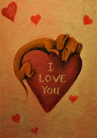 Dachshund - I Love You via Dachshund Clube