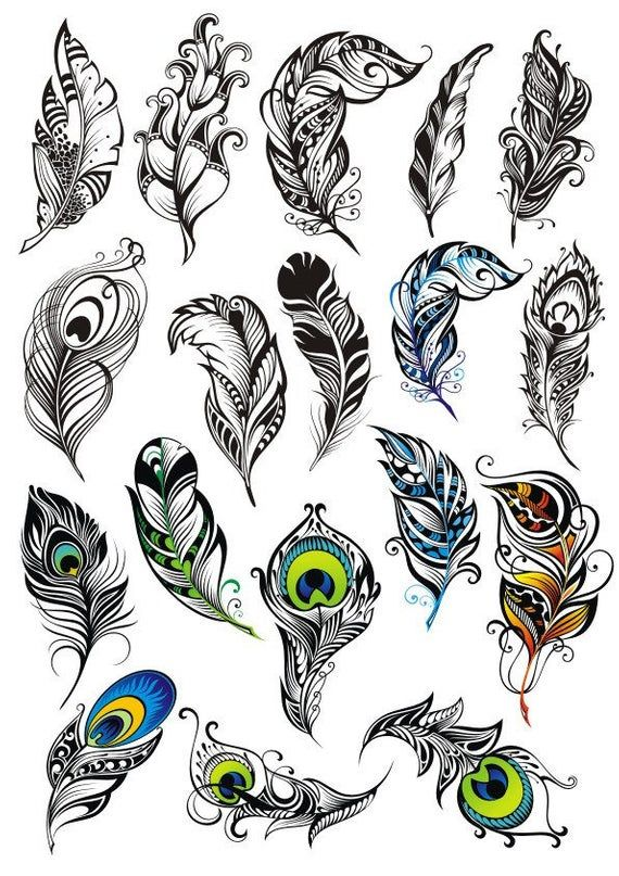 Feathers Plans For Laser Cnc Plotter Cut File Vector Plot Laser Cut Vector Laser Cut Template Vector Cutting Plan Dxf
