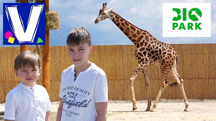 В Одессе открылся новый Биопарк. Это парк развлечений, сочетающий в себе элементы парка аттракционов, зоопарка и ботанического сада. Биопарк будет расти и со...