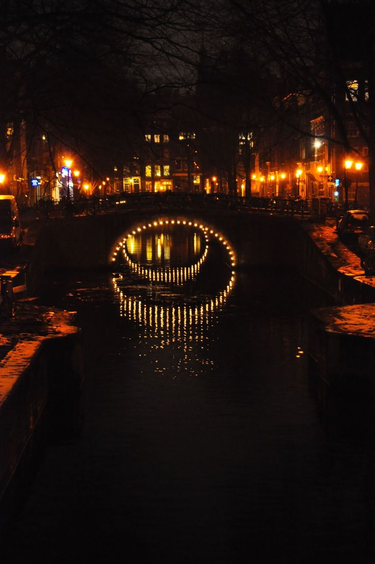 The Canals Alight via: Behind The Lens Lukey: I AMsterdam #travel #photography