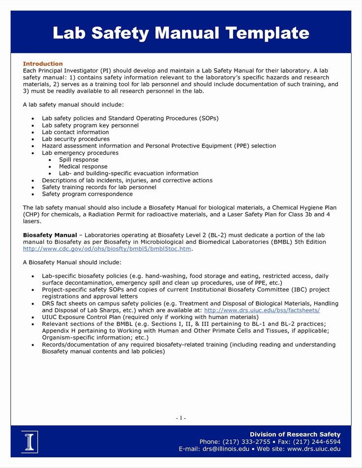 Information Security Analyst Resume Lovely 77 Beautiful