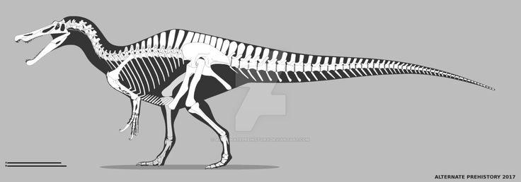 Baryonyx Walkeri Skeletal by Alrernate prehistory on DeviantArt