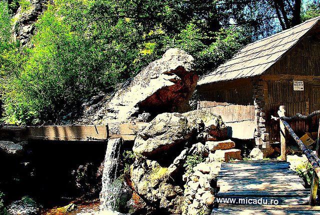 Water Mill in Eftimie Murgu, Caraş-Severin, Romania