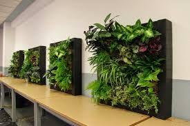 Resultado de imagen de jardin vertical artificial ikea