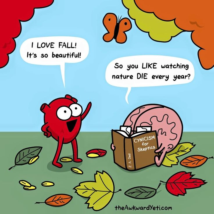 Heart vs Brain