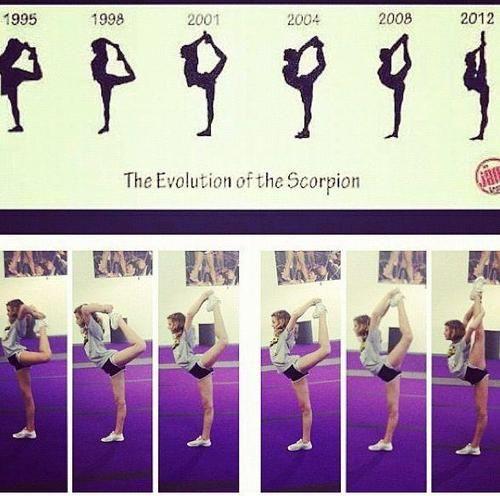 evolution of the scorpion