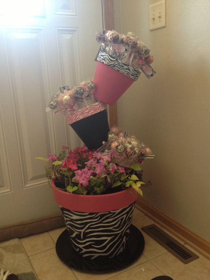 Zebra print flower pot and homemade cake pops!