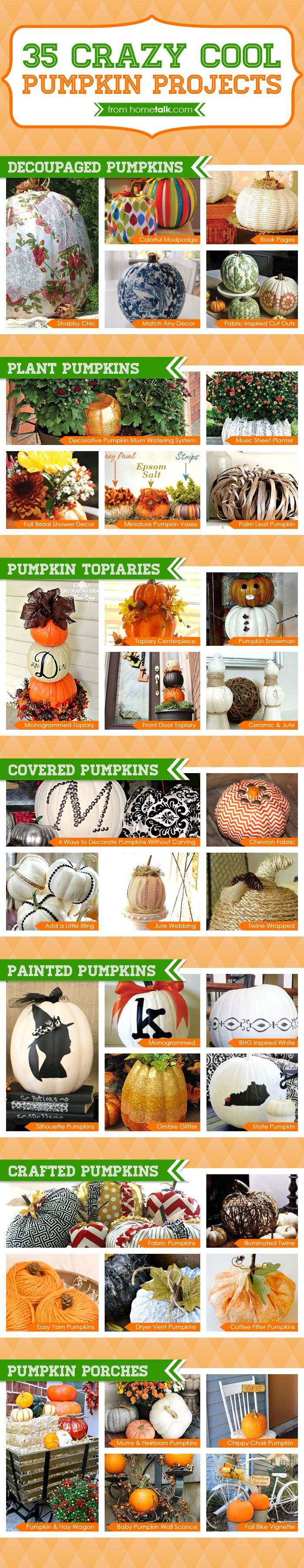 35+ crazy cool pumpkin ideas to try this fall. This is such an amazing list!