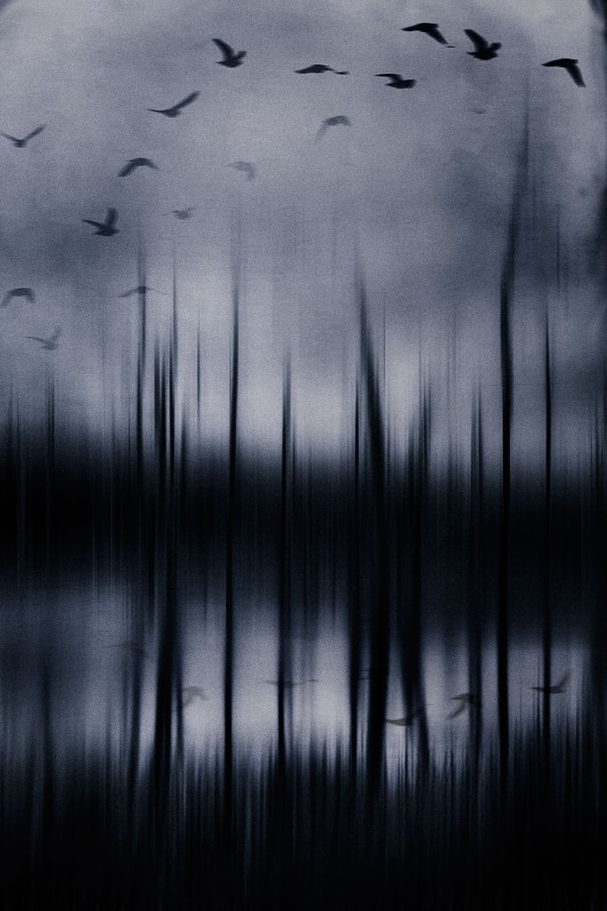 The Everlasting Symphony by Ausadavut Sarum
