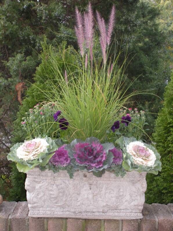 Fall Gardening: gorgeous fall planter with cabbage, mums, pansies, ivy, fountain grass, and heather.