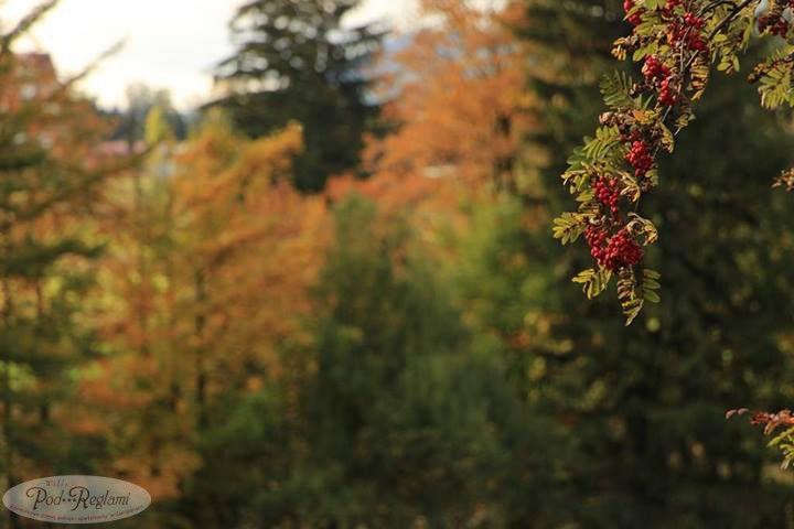 Tatry jesień - 29 wrzesień 2013 roku