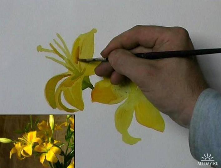 Сергей Андрияка Желтые лилии (мастеркласс по акварельной живописи)