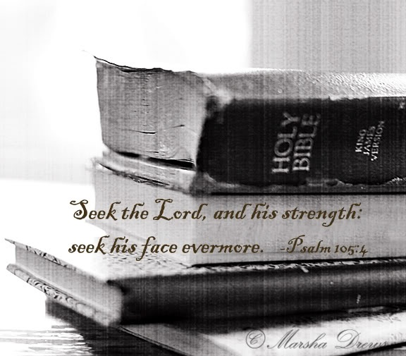 Seek the Lord, and his strength: seek his face evermore. Psalm 105:4 MY NEW FAVORITE VERSE!!
