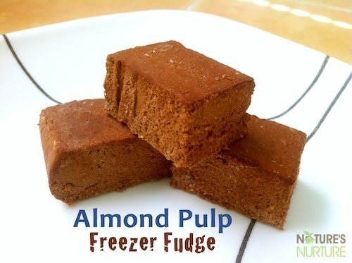 Almond Pulp Freezer Fudge - Nature's Nurture