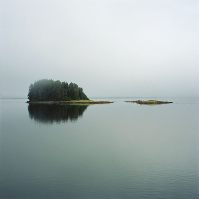 "From the ""Wilderness"" series; 30"" x 30"" chromogenic print."
