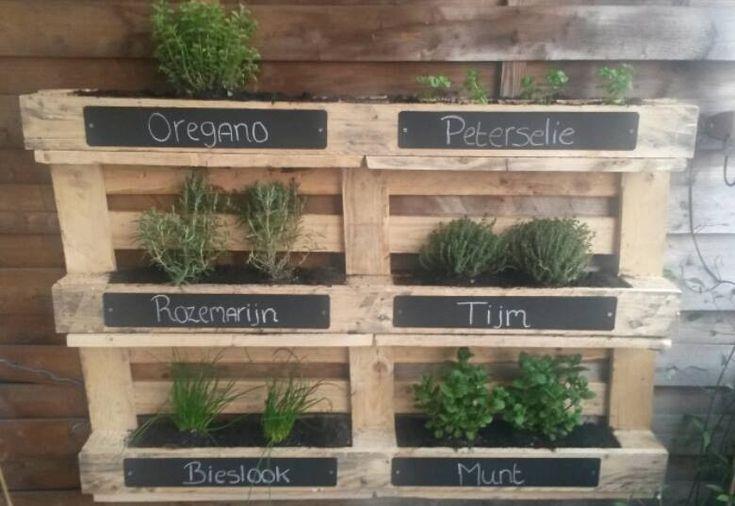 Kruidenrek van een pallet tuin pinterest pallets and van - Decoratie van een terras ...