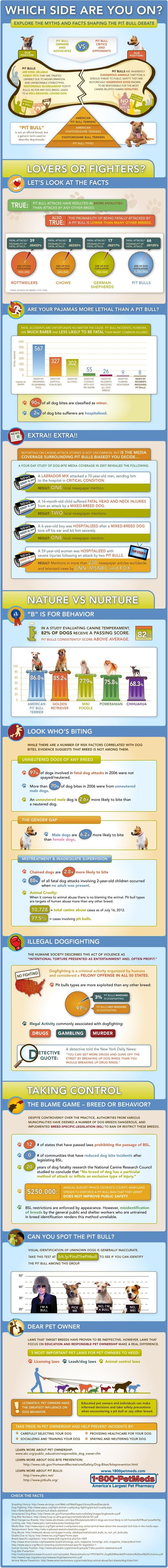 Pit Bull Myths and Facts Infographic