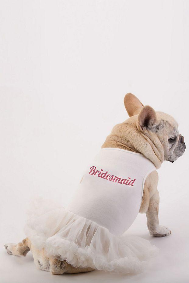 Bridesmaid Dog Dress David S Bridal Dogs In Weddings French Bulldog Party Bridesmaids Wedding Attire