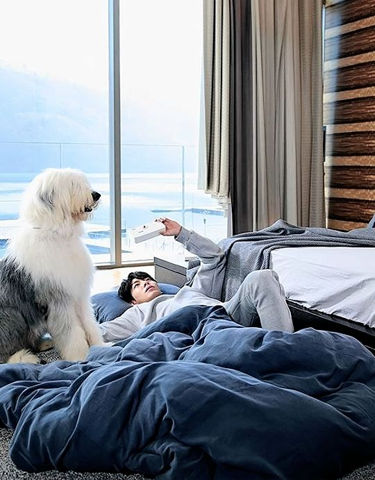Uncontrollably Fond the dog Pororo #kdrama #woobin
