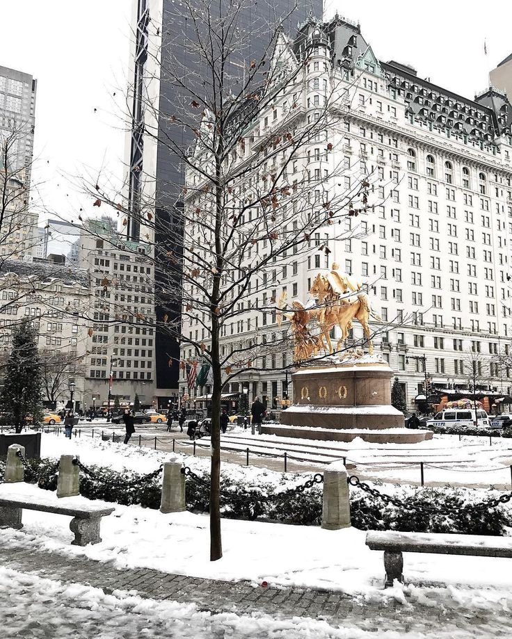 The Plaza Hotel, NYC