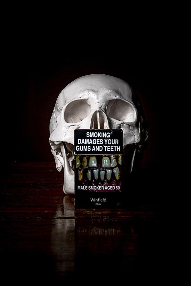 TEETH still life photograph by #CheechSanchez 2014 #skull #skulls skulls…
